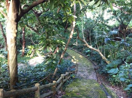 「墓マイラー」と行く、末吉の森 沖縄のお墓のヒミツ、末吉の森のヒミツ!!