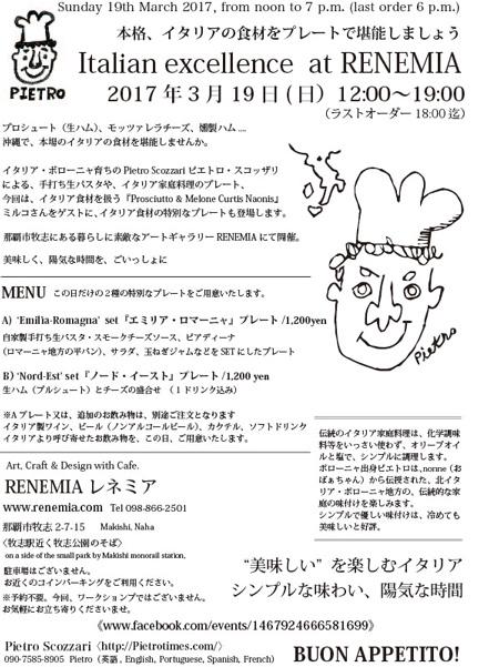 2017.3RENEMIA-pie