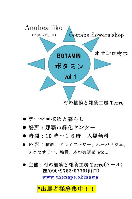 ボタミン① チラシ-1
